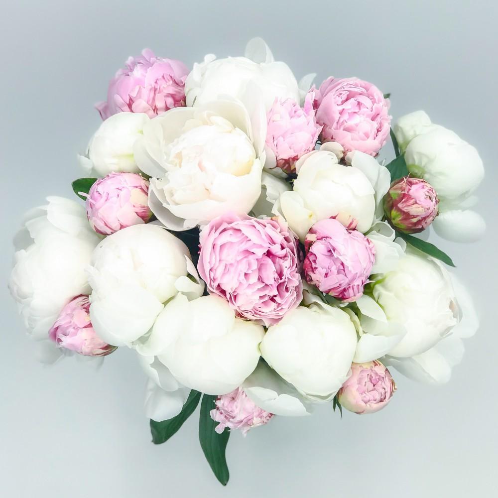 Цветов яблоньки, самые красивые букеты из пионов